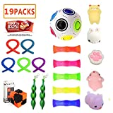 LINKCITY CREATIVE Sensory Toys Set, 19 Pack Stress Relief Fidget Hand Toys Adults Kids, Sensory Fidget Squeeze Widget Relaxing Therapy - Perfect ADHD ADD Anxiety & Autism
