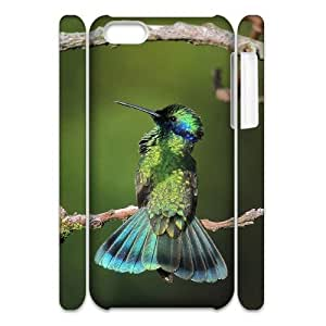 Cell phone 3D Bumper Plastic Case Of Hummingbird For iPhone 5C