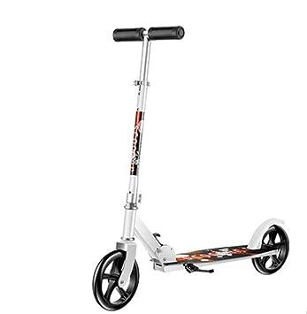 ZHIJINLI Bicicleta de Ruedas para Adultos Scooter de Dos Ruedas para pasajeros 200 Ruedas Grandes y Redondas de Dos Ruedas de patinetas para Patinar en el ...
