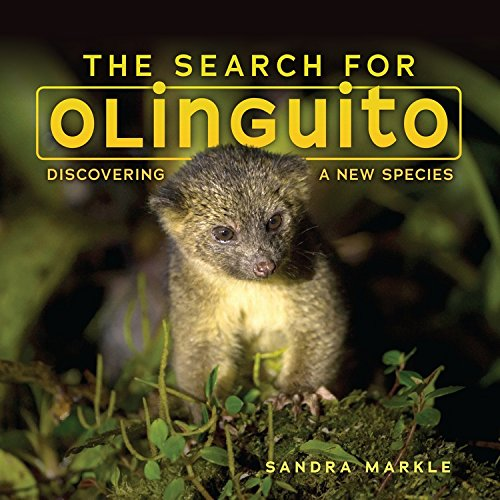 Book Cover: The Search for Olinguito: Discovering a New Species