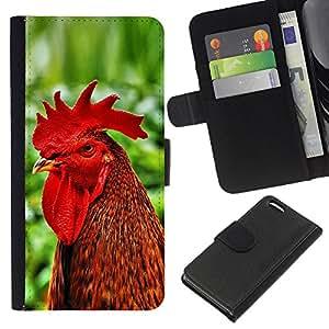 Apple iPhone 5C - Dibujo PU billetera de cuero Funda Case Caso de la piel de la bolsa protectora Para (Cool Funny Rooster Cock)