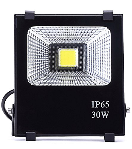 Hagolight 30W LED Flood Lights Outdoor Security Lights, 150W Halogen Bulb Equivalent, Outdoor Floodlight Waterproof IP65 2100lm, Super Bright 6000K, Daylight White by Hagolight