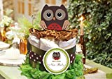 Forest Animal Woodland Wise OWL Baby Mini One Tiered Diaper Cakes - Handmade By LMK Gifts