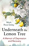 img - for Underneath the Lemon Tree: A Memoir of Depression and Recovery book / textbook / text book