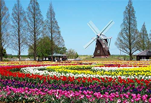 Laeacco 10x8ft Beautiful Tulip Garden Scenery Backdrop Vinyl Blooming Colorful Tulips Parterre Trees Windmill Background Child Adult Portrait Spring Scenery Landscape Wallpaper Wedding Shoot