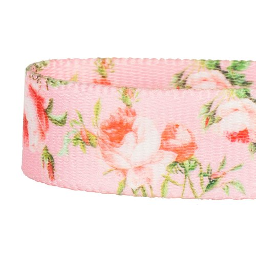 Blueberry Pet Durable Spring Scent Inspired Floral Rose Baby Pink Dog Leash 5 ft x 5/8'', Small, Leashes for Dogs by Blueberry Pet (Image #5)