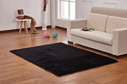HUAHOO 4 x 5 Black Area Carpet for Bedroom / Living Room / Black Carpet Black rug for Living Room Bathroom