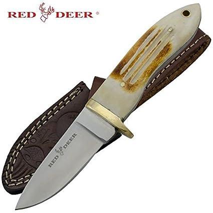 Amazon.com: Rojo Mango De Hueso Cuchillo de caza, diseño de ...