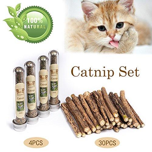 MR-BABULA Cat Catnip Sticks Toys, 100% Natural Silver Vine/Matatabi Dental Treats Molar Chew Toy, 30PCS + 4PCS