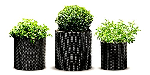 Rattan Plant Pot Set of 3 Pieces Small Medium Large Resin Brown Colour Planters Flowers Backyard Balcony Outdoor Weatherproof Stylish Porch Garden Decorative & eBook by Easy&FunDeals by EFD