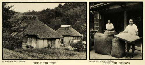 1935 Print Silk Worm Cocoon Clothing China Hut Farming Agriculture Textiles Art - Original Halftone - Hut Clothing The