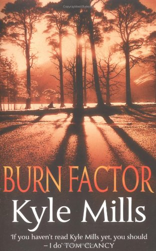 Burn Factor by Piatkus Books