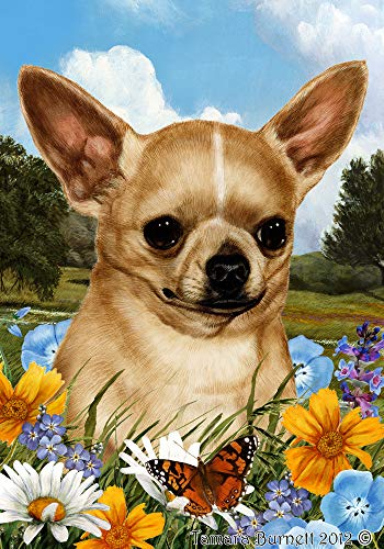 Best of Breed Chihuahua Tan Summer Flowers Garden Flag ()