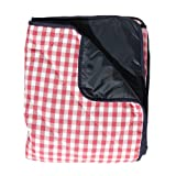 Red Gingham Padded Picnic Blanket