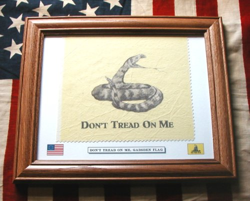 American Revolution. Framed Don't Tread On Me, Gadsden Flag Review