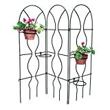 Achla Designs Orangery Wrought Iron Garden Trellis