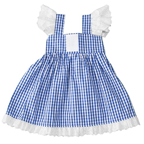 Girls Gingham A Line Dress with Eyelet Lace Trim & Angel Sleeves (4T, Blue)