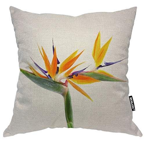 - Moslion Cotton Linen Square Decorative Throw Pillow Covers, Bird of Paradise Pillow Cases Cushion Cover for Sofa Bedroom Livingroom Camping Car Pillow Sham 16x16 Inch
