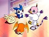 Digimon Adventure - Staffel 2, Volume 2: Episode 18-34