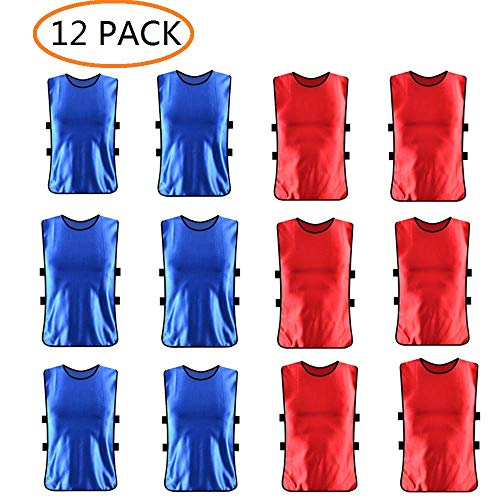 ANSLYQA Sports Pinnies Nylon Mesh Scrimmage Team Practice Vests Penny Jerseys for Children Youth Soccer Football Basketball Volleybal (12-Pack)