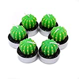 FOONEE Cactus Tealight Candles 6pcs Cactus Candle Holder Smokeless Cactus Floating Candles Cute Succulent Plant Candles Decorative Scented Candles for Home Decor (Prickly pear)