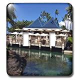 Sandy Mertens Hawaii Travel Designs - Restaurant and Shark in Pond at Resort on the Big Island, HI - Light Switch Covers - double toggle switch (lsp_232748_2)