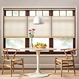 Real Simple Cordless Top-Down Bottom-Up Cellular 70-Inch x 72-Inch Shade in Alabaster