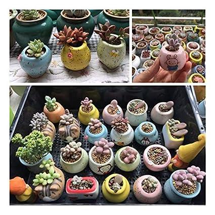 Cry 4cm*3cm Cratone C/éramique Vase Chat D/écoration de Pot de Fleurs bac /à Fleurs Mini hydroponie vases Home Office Decor Fleurs 3/* 4/cm