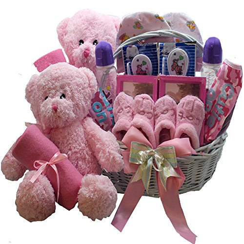 Art of Appreciation Gift Baskets Double The Fun New Baby Gift Basket, Twin Girls (Birthday Gift Baskets Usa)