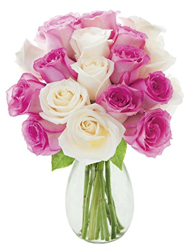 - Kabloom Cupcake Pink and White Roses (Dozen and a Half) - With Vase