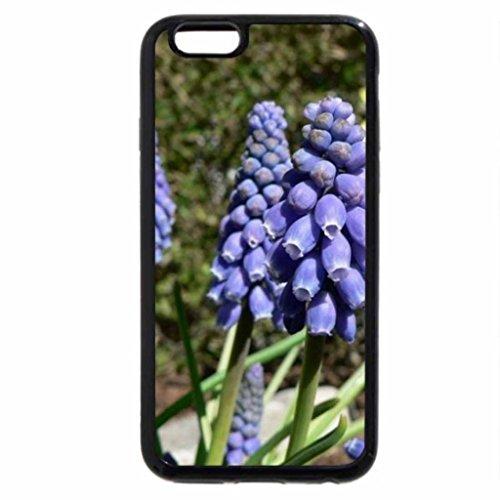 iPhone 6S Plus Case, iPhone 6 Plus Case, Grape Hyacinth