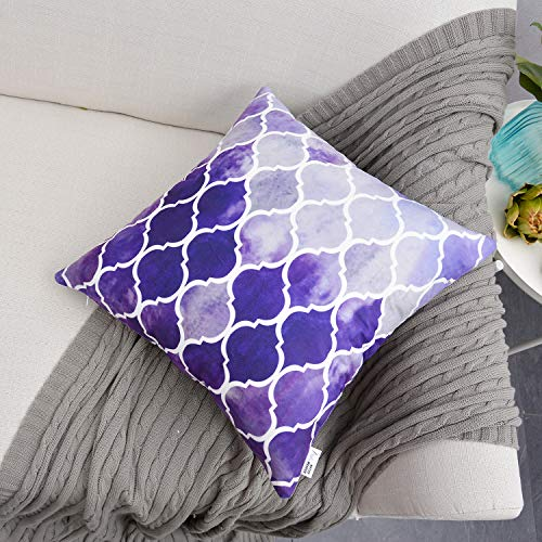 NATUS WEAVER Cozy Throw Pillow Case Cover Couch Bed Sofa Manual Hand Painted Colorful Geometric Trellis Chain Print 20 X 20 Inches Main Grey Purple ()