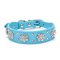 Gimilife Leather Dog Collar, Personalized Dog Cat Collar, Bling Collar, PU Leather Collar Black,Red,Pink and Blue, Male and Female, Five Adjustable Sizes Small or Medium Dogs(Blue S)