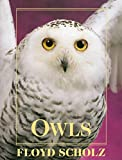 img - for Owls: An Artist's Guide to Understanding Owls book / textbook / text book
