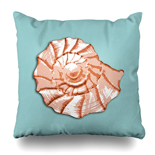 ONELZ Aqua Peach Seashell Square Decorative Throw Pillow Case, Fashion Style Zippered Cushion Pillow Cover (16X16 (Aqua Butterfly Kisses)