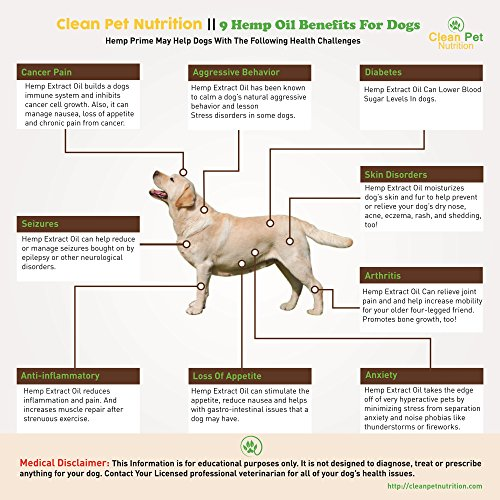 Hemp-Oil-For-Dogs-Cats-375mg-USA-Veterinarian-Formulated-Organic-Hemp-Oil-For-Anxiety-Stress-Relief-Arthritis-Pain-Relief-Hip-Joint-Dog-Supplement-Apply-To-Hemp-Prime-Treats