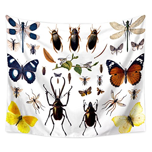 QCWN Custom Nature Decor Tapestry, Collection of Various Butterfly Dragonfly and Insect Tapestry Wall Hanging For Bedroom Living Room Dorm.Multi 59x51Inc