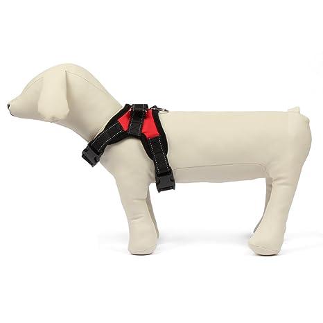 Arnés para perros (Tejido Oxford 600d chiot-funkeen ®: Amazon.es ...
