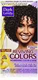 SoftSheen-Carson Dark and Lovely Reviving Colors Nourishing Color & Shine, Natural Black 395