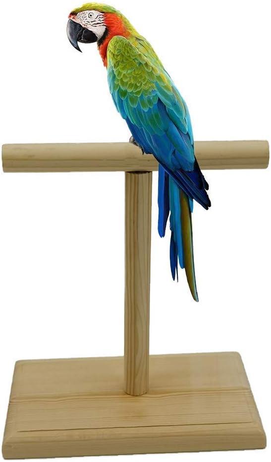 MOUHIV Perca de Pájaro Bird Perch Parrot T Stand Birds Playstand Soporte de Juego de Entrenamiento portátil para Loros Cockatiels Conures Green Cheek Conure Caiques para agarrar Madera