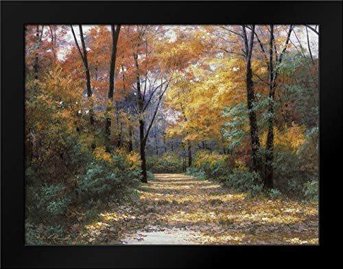 Autumn Road 37x28 Modern Black Wood Framed Art Print by Romanello, Diane