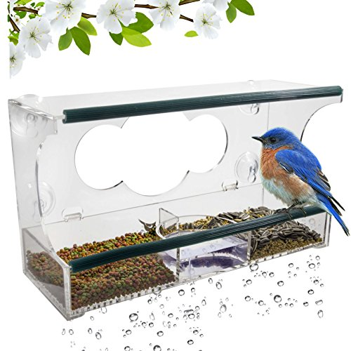 Birdious Window Bird Feeder – Large Squirrel Proof Bird House with Bird Bath for Outdoors, Enjoy Clear View Wild Cardinals. Strong Suction Cups Mount Outside Glass, Removable Seed Tray. Best Gift Idea Large Outside Birdbath