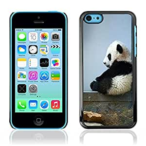 Graphic4You Cute Panda Animal Design Hard Case Cover for Apple iPhone 5C