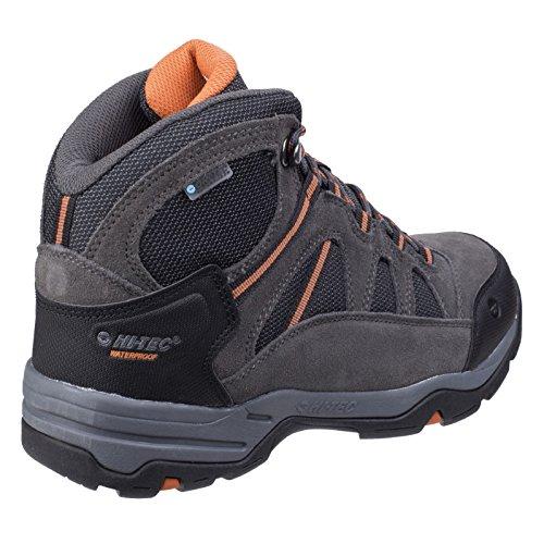 Hi-Tec Womens/Ladies Bandera II WP Hiking Boots Navy/Grey/Red FowyyI9Q