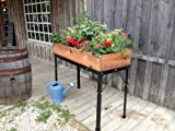 "Elevated Cedar Square Box Garden 48""W x 20""D x 36""H w/8"" Soil Depth- Finished"