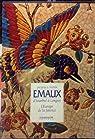 Emaux, l'europe de la faience : d'istanbul a longwy par Peiffer