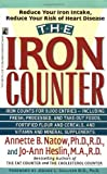 The Iron Counter, Annette B. Natow, 0671783246