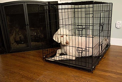 Iconic Pet Foldable Double Door Pet Training Crate with Divider, 42''
