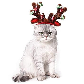 Amazon.com: ROZKITCH - Gorro de Navidad para perro, elk ...