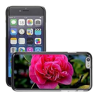 """Print Motif Coque de protection Case Cover // M00155042 Flores La flor planta Macro Naturaleza // Apple iPhone 6 6S 6G PLUS 5.5"""""""